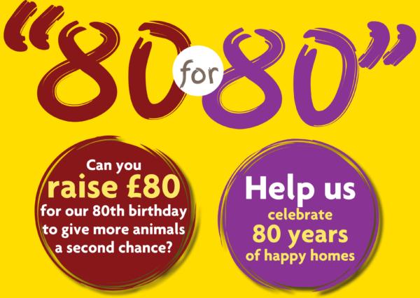 '80 for 80' Birthday Challenge
